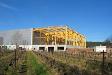 Cave de coopérative viticole - Cébazan (34)